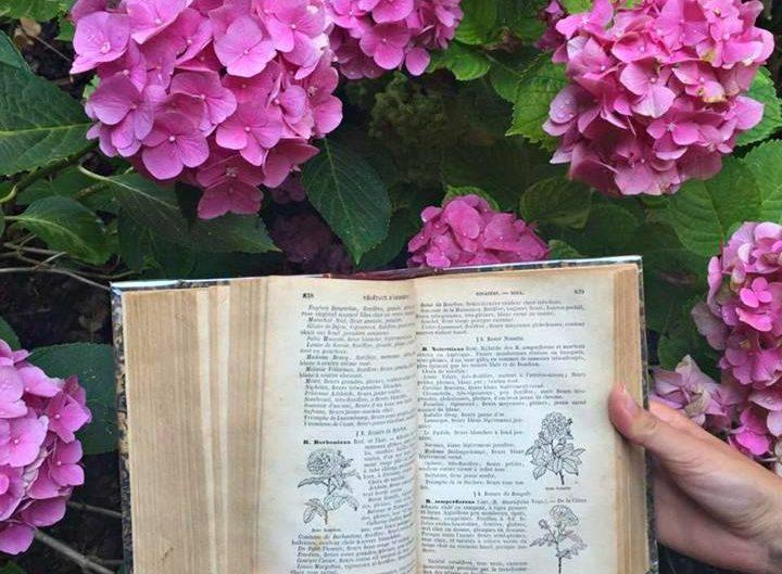 Jeu concours pour gagner un livre ancien sur le jardinage